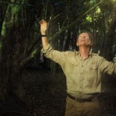 'The River', agobiante viaje por el Amazonas