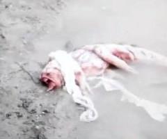 Neill Blomkamp vuelve a la carga con un nuevo vídeo viral, 'AGM Heartland'