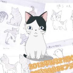 Nekojima, cortometraje realizado por un estudio de anime afectado por el terremoto de Japón de 2011