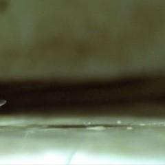 'Origen' (Inception): ciencia ficción onírica imprescindible