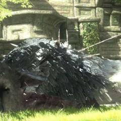 'The Last Guardian' llegará en navidad de 2011… suerte que tenemos la Team Ico Collection