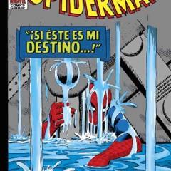 'Omnigold El Asombroso Spiderman vol. 2: Si este es mi destino…', pura magia