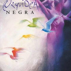 'Orquídea Negra', se puede apreciar cierto aroma a Sandman