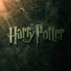 J.K. Rowling está escribiendo para Warner Bros un spinoff de Harry Potter
